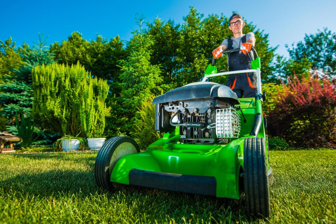 Cutting lawn grass by our expert with machine