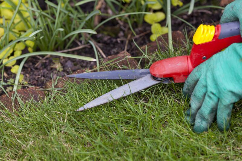 Lawn edging cleanup